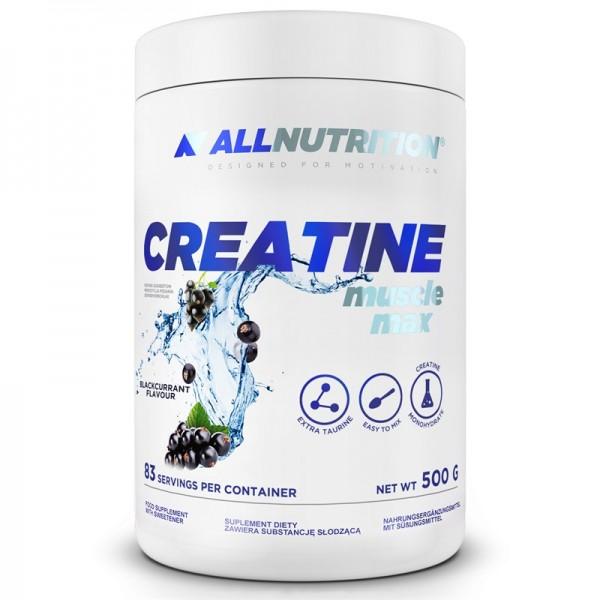 Creatine Muscle Max  500g AllNutrition
