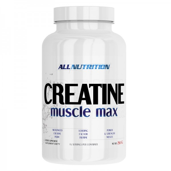 Creatine Muscle Max  250g AllNutrition